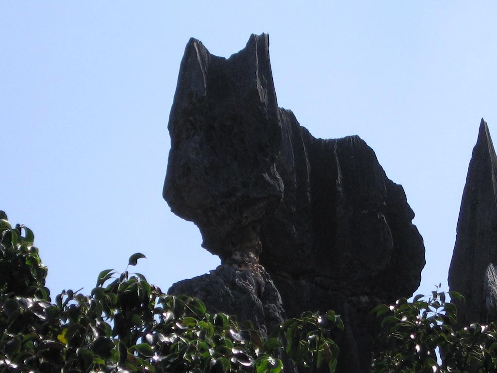 異国(中華人民共和国)の猫3/ForeignCats3