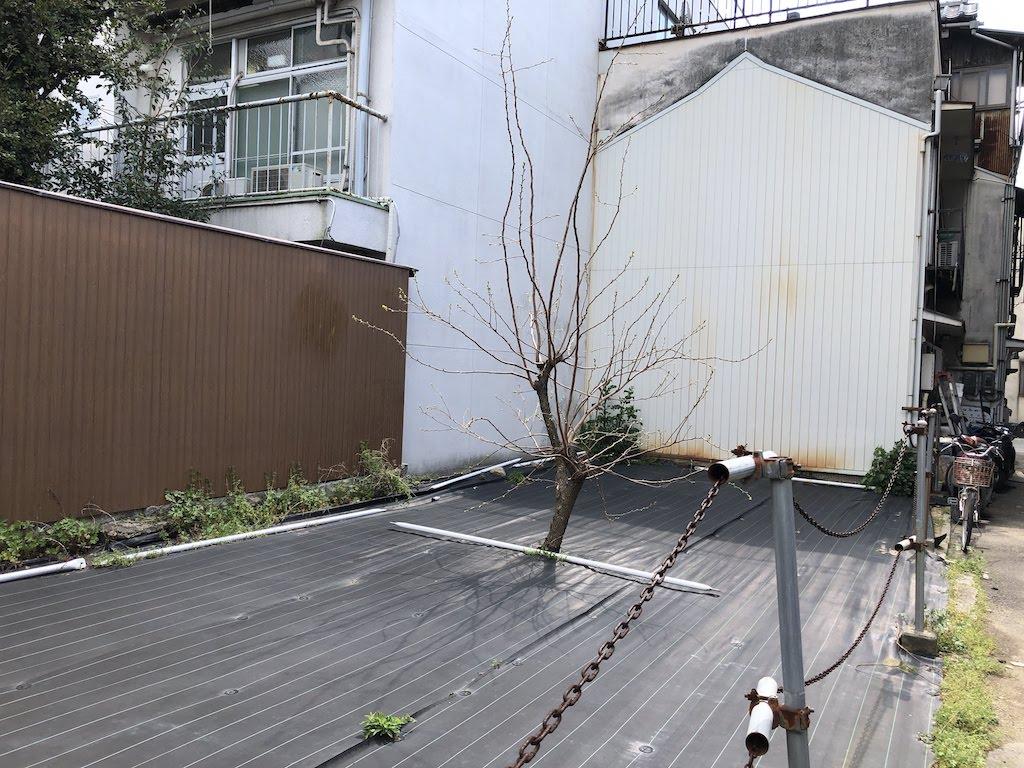 今蔵(今倉)小路の現代アート/ ImakuraShojiContemporaryArt