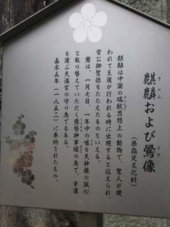 日本の猫2/JapaneseCats2