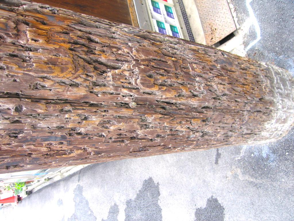 夜の街・新開に聳える木製の電信柱/TelegraphPole
